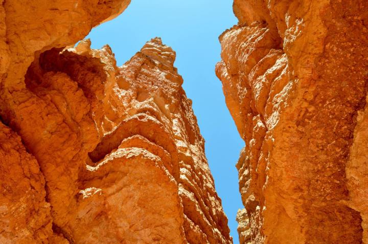 Bryce Canyon & Zion Canyon